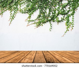 Empty white concrete background with green leaves and brown wood floor.