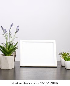 empty white frame, flowerpot with flower on a black table, white background
