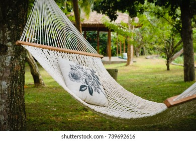 Empty white hammock with pillow hanging between trees in a shaded garden, Tangalle, Sri Lanka.