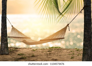 Empty white hammock with sunhat and sunglass in the shade between palm tree with palm leaves on tropical beach at sunset. Sunset summer beach relax with hammock on glowing bokeh from blue sea.