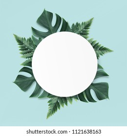 Empty white summer and spring nature background with green leaves and circle frame for copy space or text creative advertising