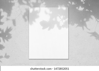 Empty white vertical rectangle poster mockup with soft hawthorn leaves shadows on neutral light grey concrete wall background. Flat lay, top view