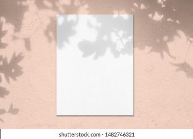 Empty white vertical rectangle poster mockup with soft shadow on pastel pink colored concrete wall background. Flat lay, top view