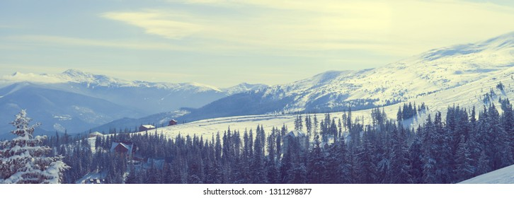 empty winter background - landscape panorama of blue top mountains range, clouds, and frozen trees