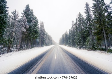 Empty winter road during a snowfall passing through a spruce forest. View from the center of the road, image in the yellow-blue toning