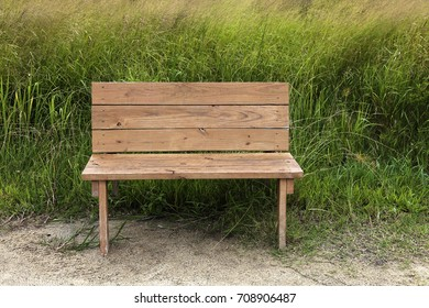 Empty wood bench with tall grass in background.