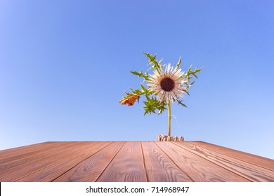 Empty wood table top with Beautiful Bright flower under bright sky in summer background , Can use for montage product display.