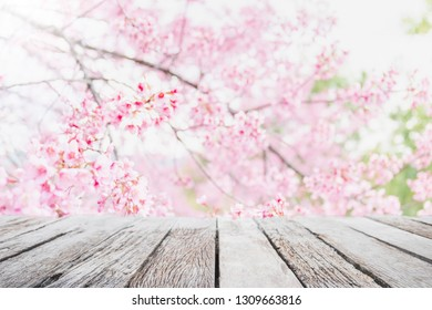 Empty wood table top and blurred sakura flower tree in garden background with vintage filter - can used for display or montage your products.