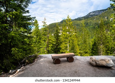 Empty Wooden Bench in a Clearing in a Pine Forest in the Mountains on a Sunny Summer Day. Squamish, BC, Canada.