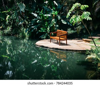 Empty wooden bench reflecting on water's edge at a tropical florest in Brazil