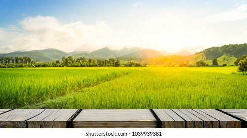 Empty wooden photo frame on paddy farm background