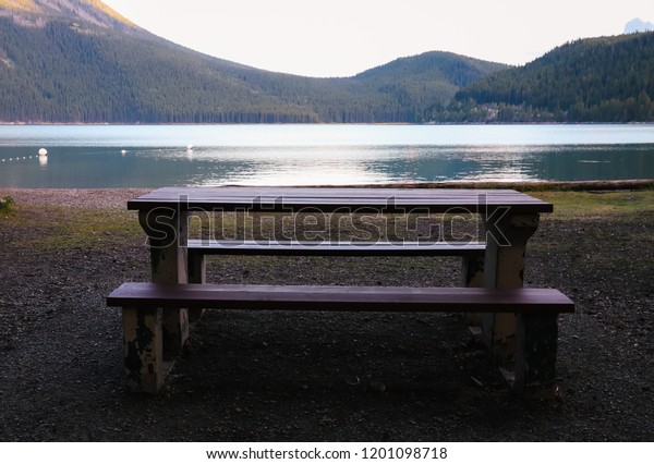 Fantastic Empty Wooden Picnic Table Two Benches Stock Image Download Now Machost Co Dining Chair Design Ideas Machostcouk