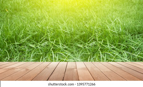 Empty wooden table, natural blurred greens on the background, the sun's rays
