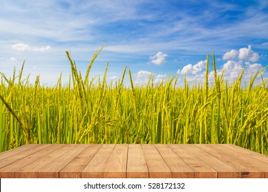 Empty wooden table on rice fields with blue sky background