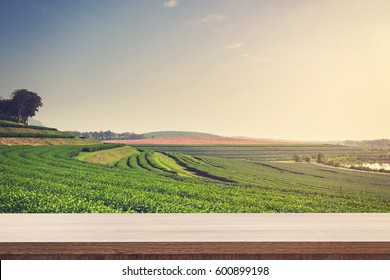 Empty wooden table for product or montage display and tea field in farm.