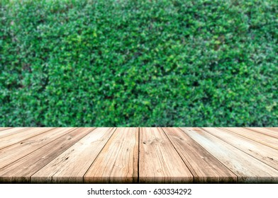 Empty wooden table top with green leaves wall background. can be used product display.