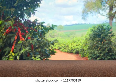 Empty wooden table with view of coffee plantation or wooden desk with farm bokeh background. Space for text.