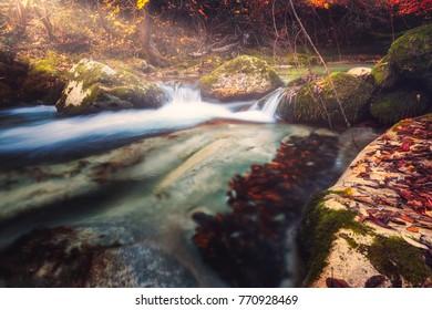 The enchanted forest. Autumn at Orfento Valley, Caramanico Terme, Pescara, Abruzzo, Italy