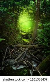 Enchanted stream in shady forest with shining glow on background