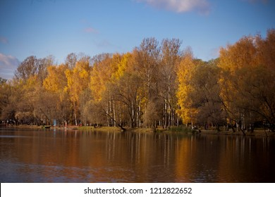 Enchanting autumn light in a park vivid rays of gold light falling through the trees unto the ground