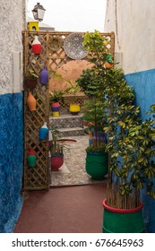 Enclosed Garden in the Medina, Rabat, Morocco