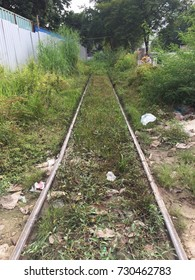 End of disused railway, cover by grass.