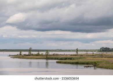 End of small grassy islet near a swampy shoreline along the Atlantic Intracoastal Waterway in North Carolina, USA, on a cloudy morning in mid May, for themes of water level, nature, environment