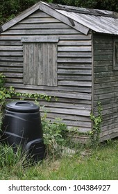 The end view of an old wooden constructed shed, set amongst overgrown grass and ivy. A black plastic compost bin to the front of the shed.