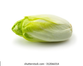 Endive (Cichorium endivia) with beautiful soft green leaves, isolated on white.