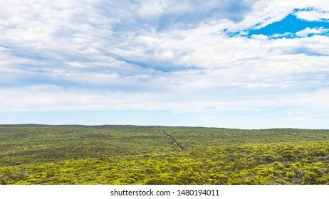 Endless bushland with eucalyptus trees viewed from Bunker Hill Lookout, Kangaroo Island, South Australia
