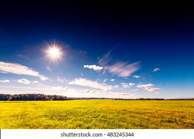 Endless fields in the woods on a background of blue sky with clouds and sun. High contrast and obscured image in the orange-purple toning
