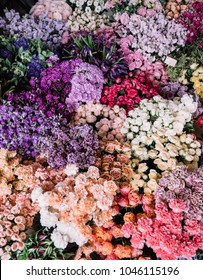 Endless flower bed of roses, carnations, ranunculus, orchids, gerbera, mattiola, eustoma, eucalyptus, peonies, at the florist shop, top view, flat lay