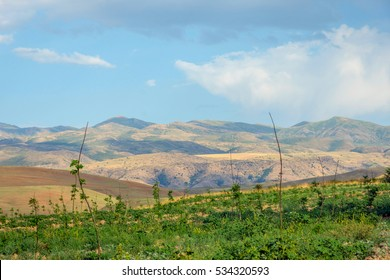 Endless hills of grassland and steppe in Kazakhstan