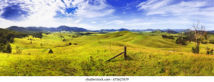 Endless lush green grass pasture of australian rural agricultural farms to grow cattle, bulls, cows and sheep in cattle and diary farm of Barrington tops, NSW.