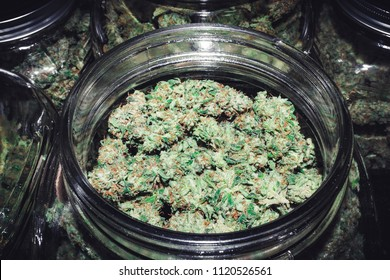 Endless Marijuana Bud Supply in Glass Container