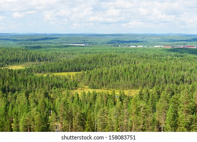 Endless northern forests. Finnish Lapland