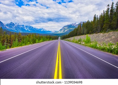 Endless road ahead! The yellow lines on the highway forms a beautiful line into the picture. One of the wonderful streets in Canada/US.