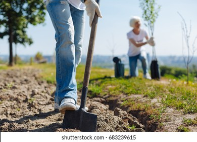 Energetic committed man using shovel to plan trees