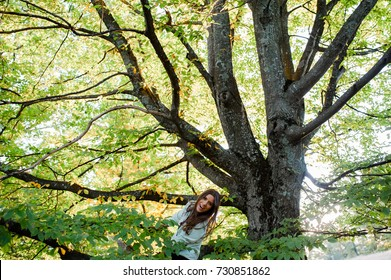 Energetic young woman climbed in a tree, sitting on a branch and laughing, having a fun time in autumn nature.