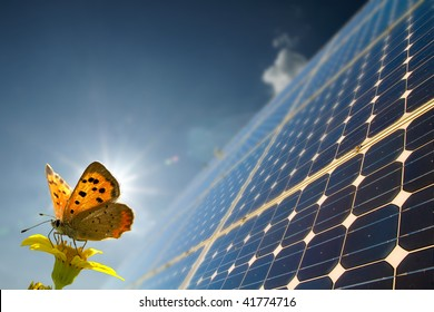 Energy and butterfly