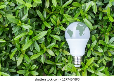 Energy saving  LED Bulb with lighting in the green nature bakground , World environment day concept.Elements of this image furnished by NASA
