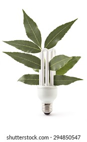 Energy saving light bulb and plant on white background, green energy concept