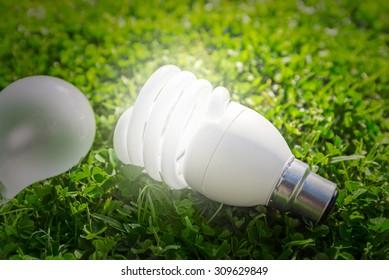Energy saving light bulb versus standard on the grass