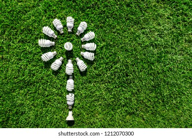 Energy saving light bulbs on grass forming flower. Green energy concept