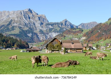 Engelberg, Switzerland - 15 October 2017: rural landscape at the village of Engelberg on the Swiss alps