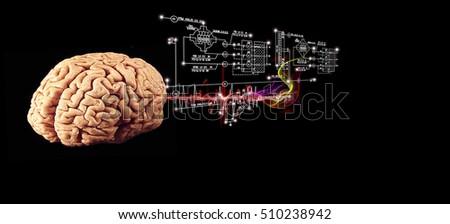 Engineering brain stock photo edit now 510238942 shutterstock engineering brain ccuart Gallery