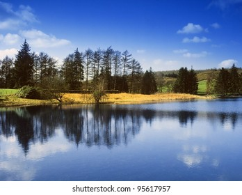 england cumbria lake district national park far sawrey near where beatrix potter lived - moss eccles tarn (reservoir)  claife heights