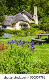 England. May 23 2014 : Typical quaint English thatched roof cottage in an English village setting