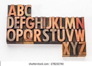 English alphabet abstract - vintage letterpress wood type printing blocks on white arr canvas