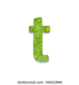 English alphabet from green leaf texture on white background